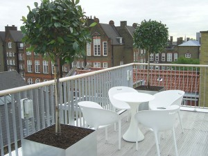 Redmans Road Roof Terrace