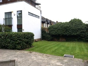 Freshly cut grass at new site in Streatham