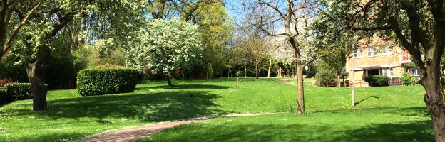 Wimbledon Park Housing Co-operative Ltd Testimonial