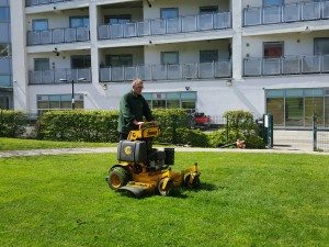 Lawn mowing with a stand on mower
