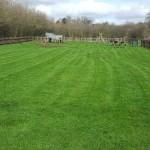 Play park grass cutting