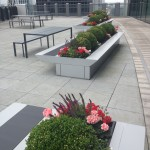 Roof terrace formal planting