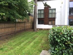 Cut grass at Streatham site
