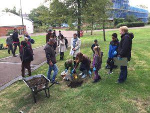 Tree planting community day